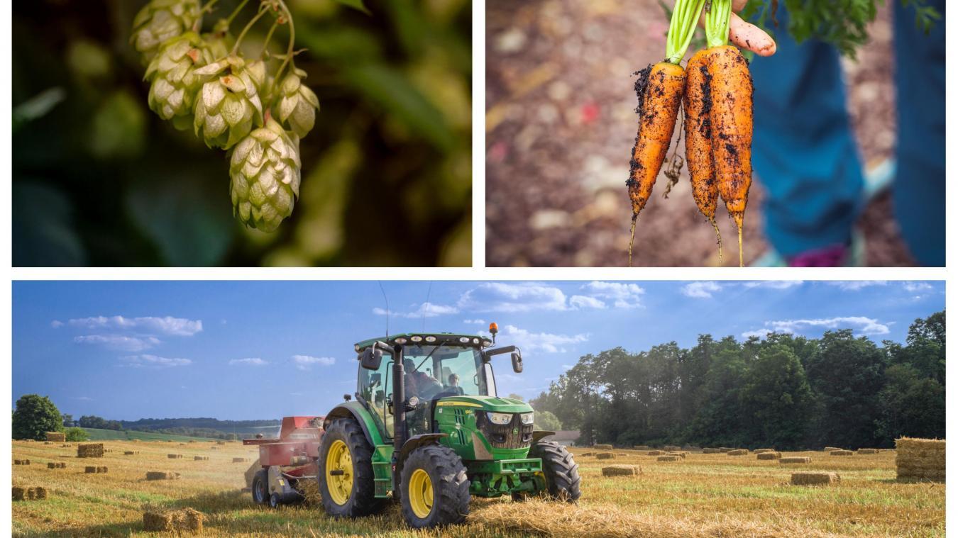 Une semaine pour fêter l'agriculture dans le Nord