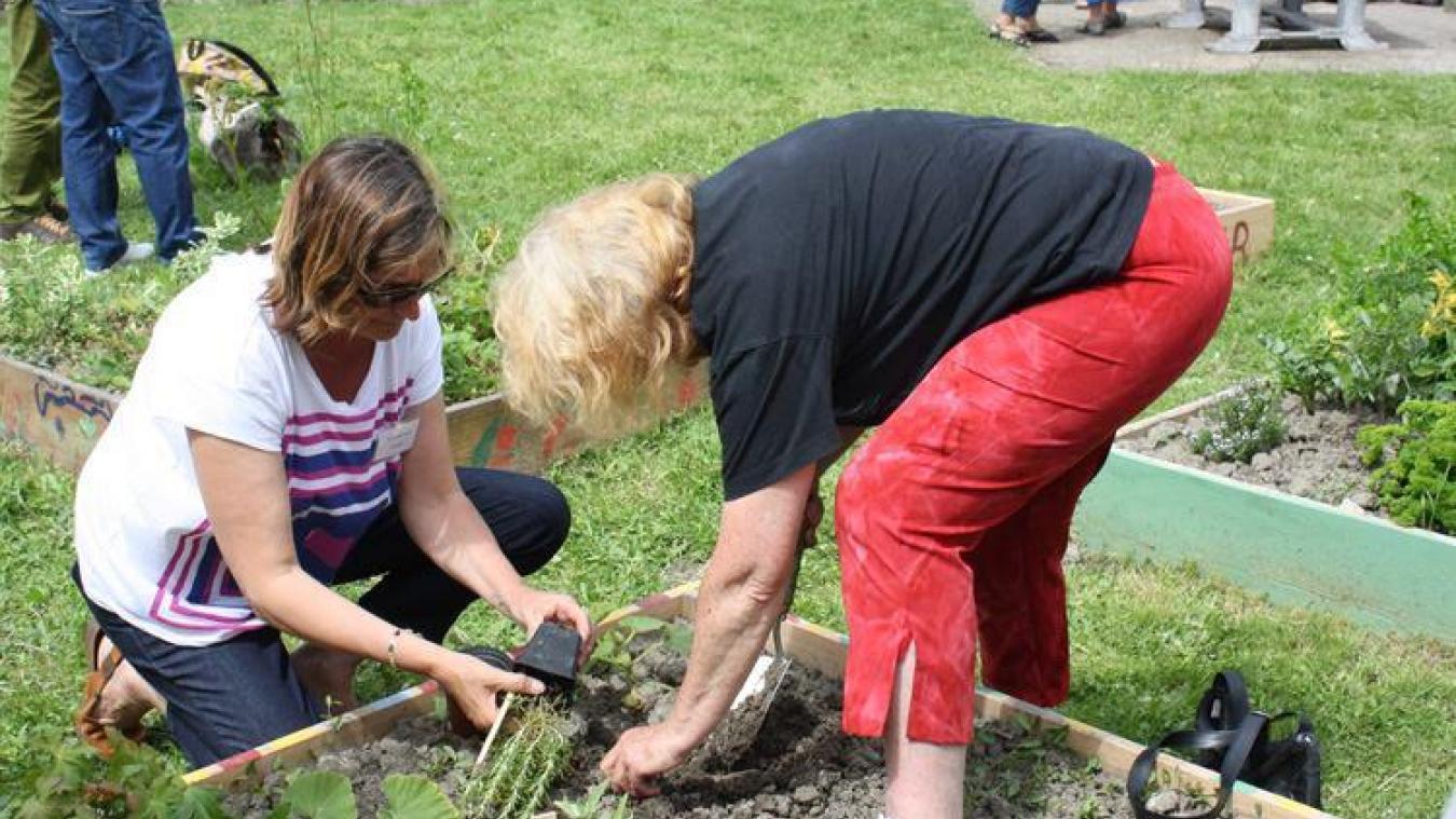 Avec ce permis de végétalisation, les Saint-polois peuvent verdir leur façade et mettre en place des jardinières mobiles.