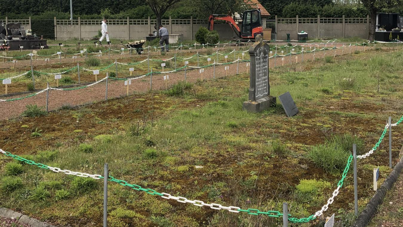 Des travaux ont débuté au cimetière de Loon-Plage dans le but d'un projet d'extension.
