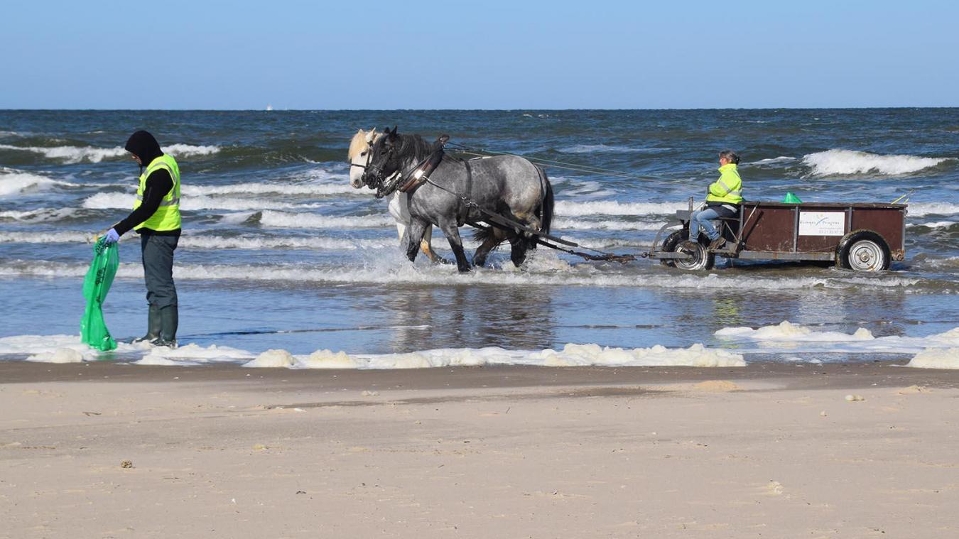 Le nettoyage de plages se perpétue chez Rivages Propres, qui maintient son activité régulièrement dans l'année.