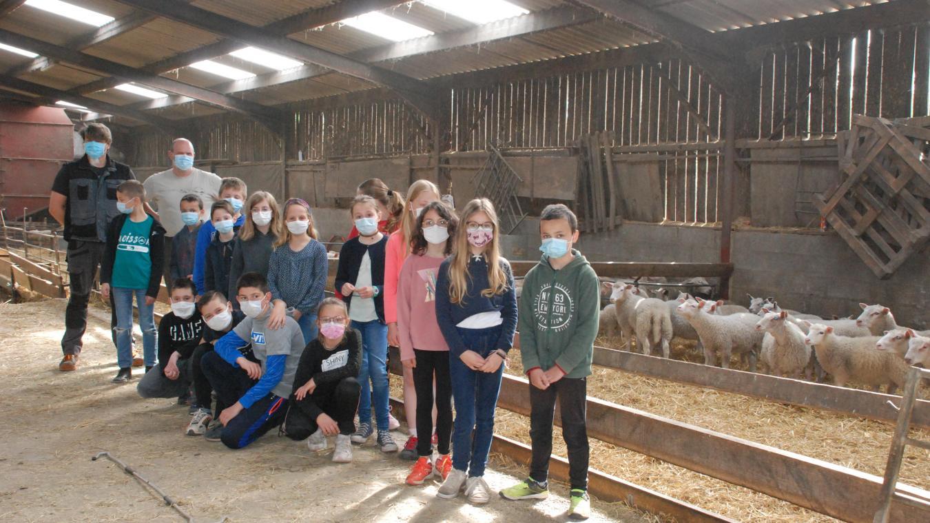 Les écoliers ont plongé dans la vie et l'activité d'une ferme tournée vers l'élevage et la polyculture.