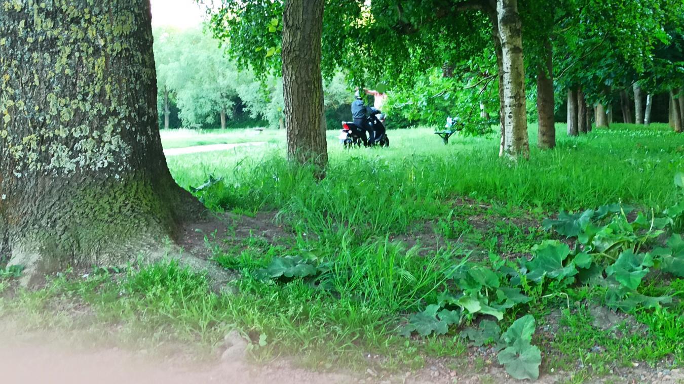 Scooters, quads et motos sont nombreux dans les parcs des Berges de la Souchez.