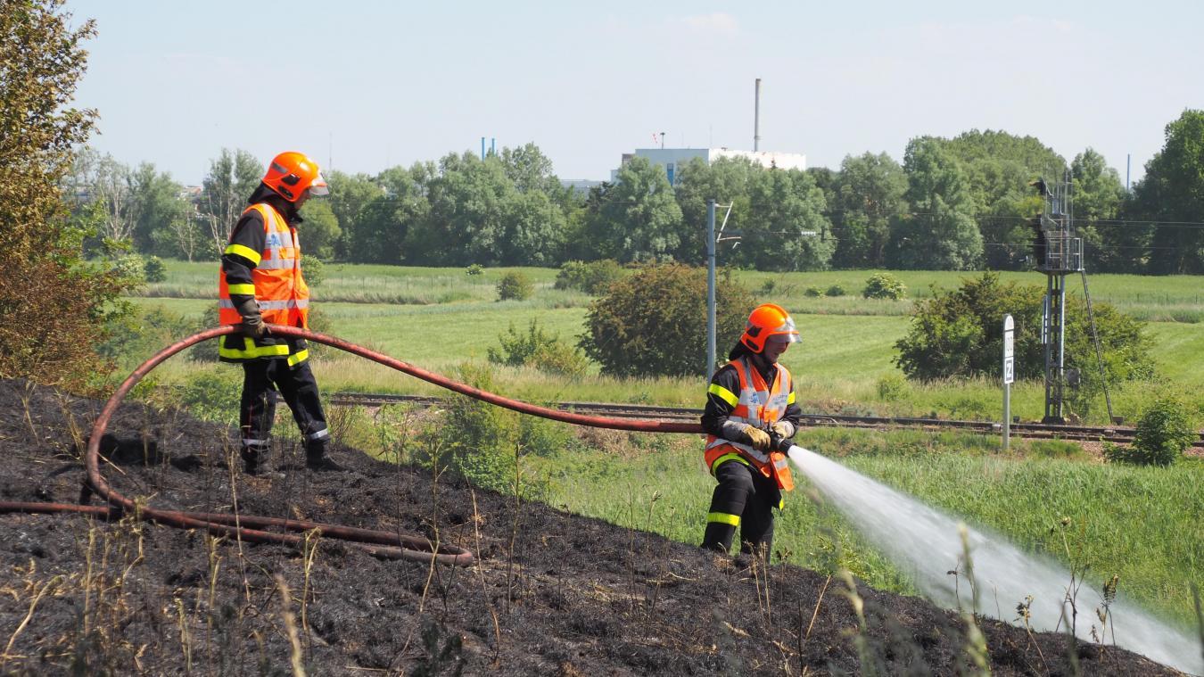Calais : plusieurs feux de broussailles au bord de l'A16