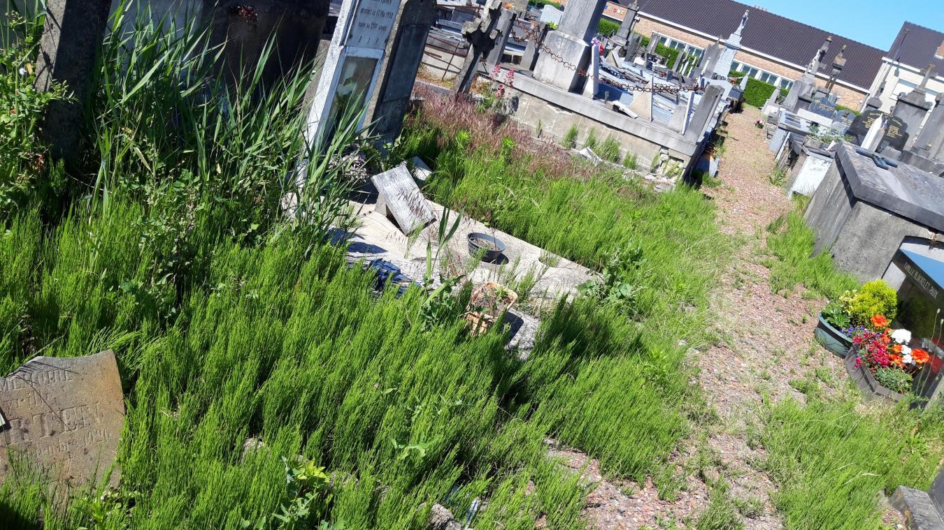 Le maire de Bourbourg explique pourquoi l'ancien cimetière semble si négligé.