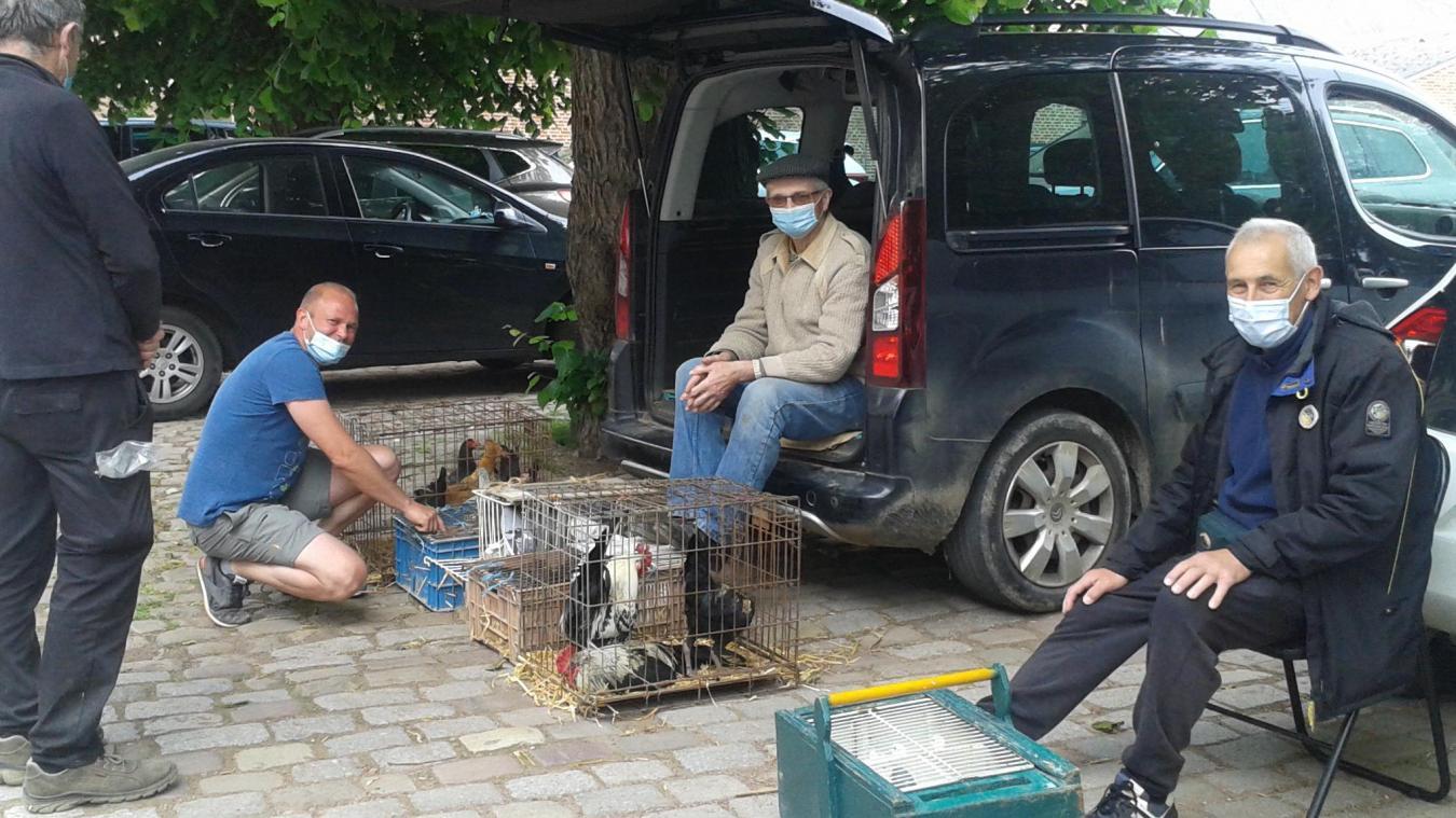 Parmi les vendeurs du vendredi matin, à Aire-sur-la-Lys.