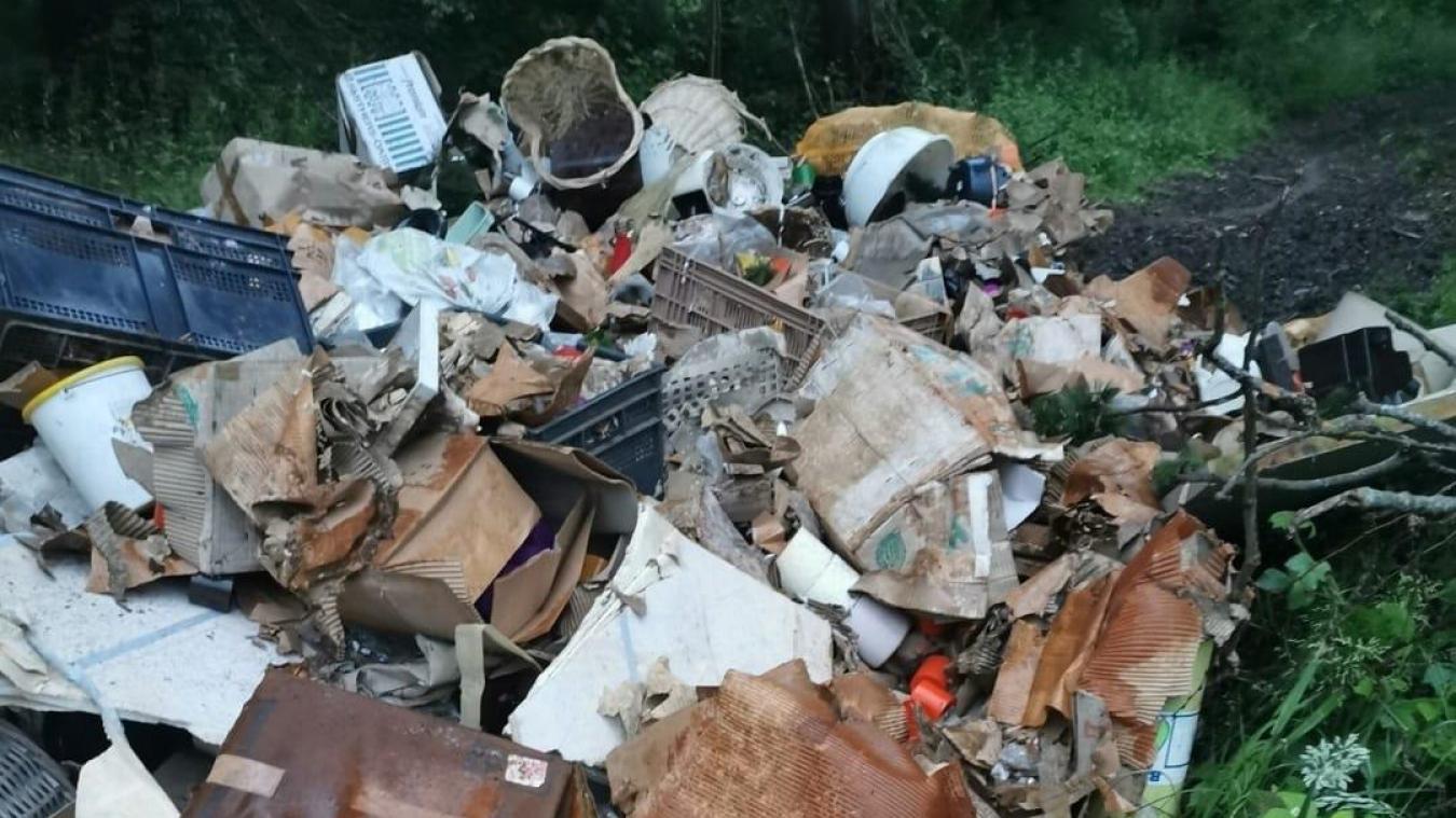 Un ou plusieurs individus ont déposé plusieurs mètres cubes de déchets dans un chemin forestier. (Facebook/Fresnicourt Le Dolmen)