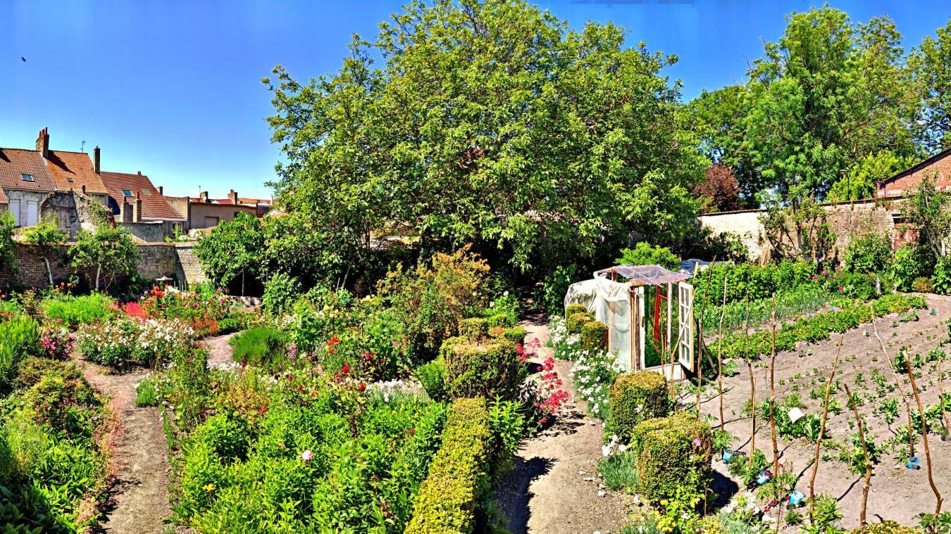 D'un côté, un potager qui permet à la sœur d'être autonome, et de l'autre, des massifs fleuris, dont la fameuse fleur capucine, qui embellissent le jardin du couvent de Bourbourg.