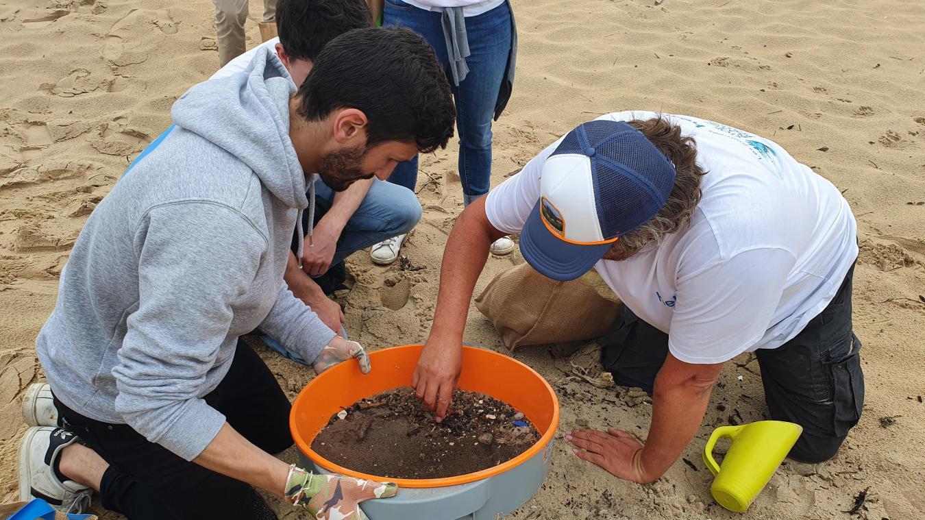 On ne les voit quasiment pas mais, pourtant, des milliers de billes de plastiques se cachent dans le sable.