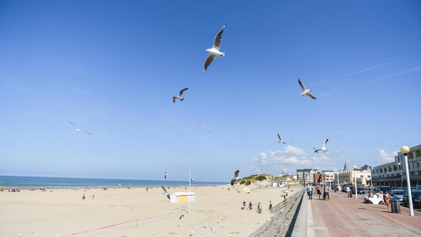 Les plus belles plages du Pas-de-Calais vous attendent (photo: Y.Cadart/CD62).
