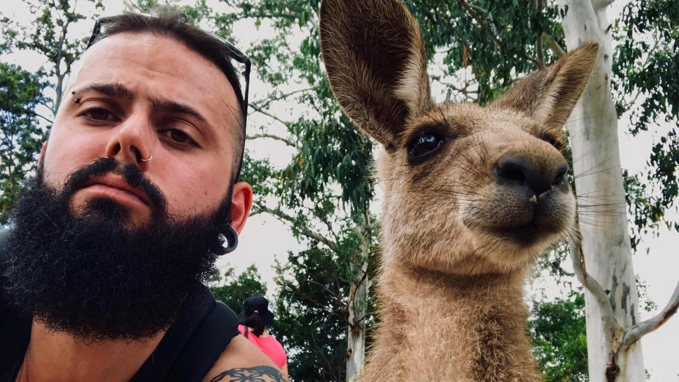 La rencontre entre Gregory Gauthier, un Calaisien, et un kangourou en Australie.
