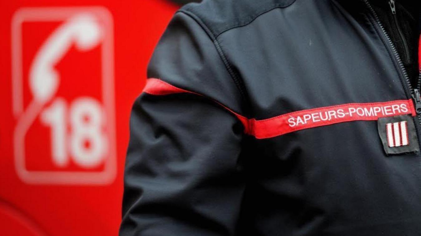 Dix sapeurs-pompiers sont intervenus pour porter secours aux deux victimes.