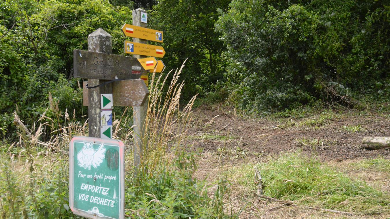 Des panneaux sensibilisant aux piqûres de tiques devraient être installés à l'entrée de la forêt de Guines.