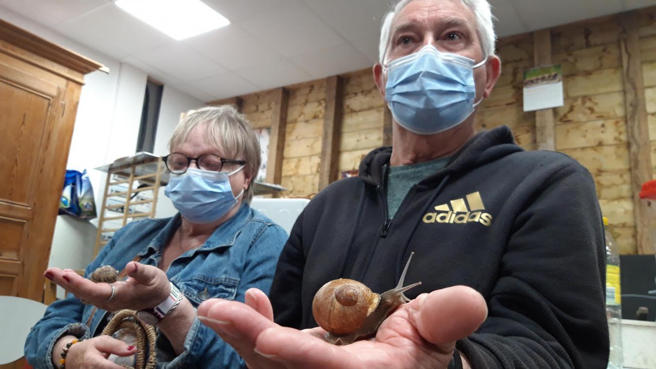 Après avoir pu approcher de près les escargots de Grégory Laude, les visiteurs sont invités à les... déguster.