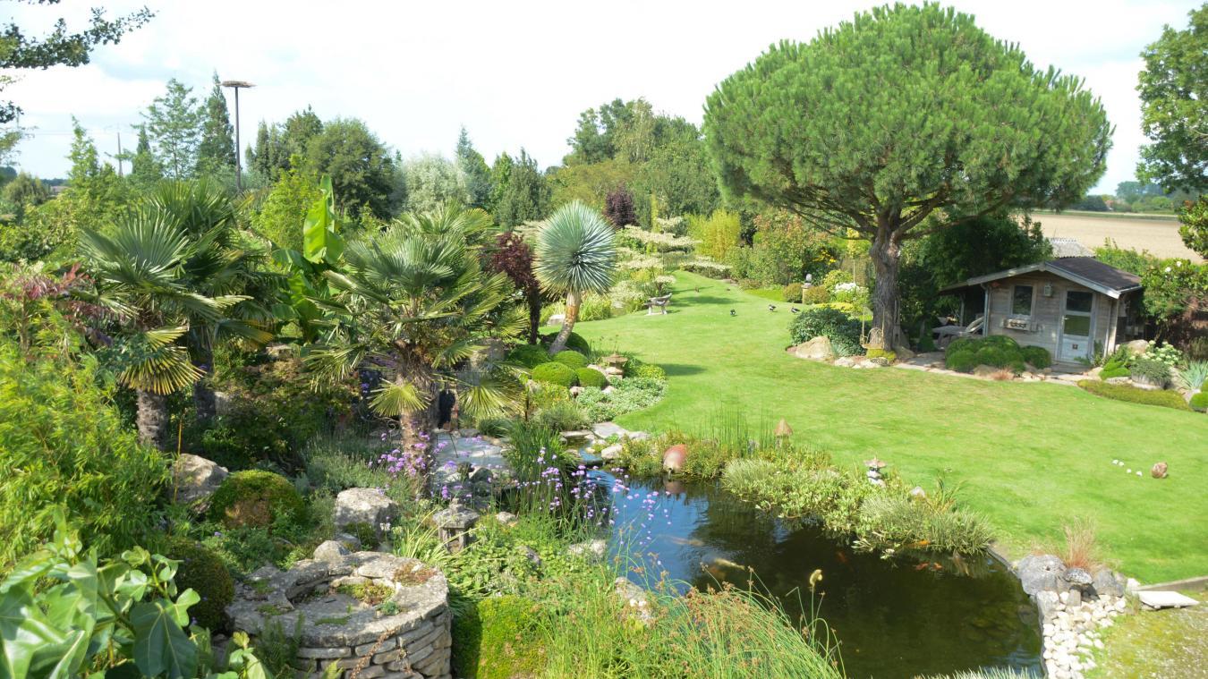 Le jardin bosselé offre un dépaysement total.