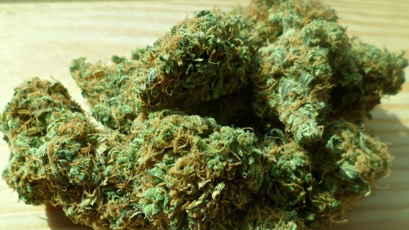 Le conducteur a été arrêté en possession d'un sachet d'herbe de cannabis.