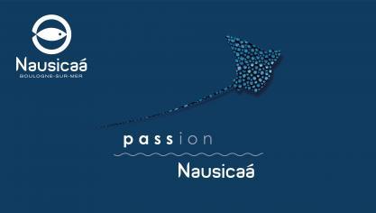 5 bonnes raisons d'acheter votre pass annuel Nausicaá !