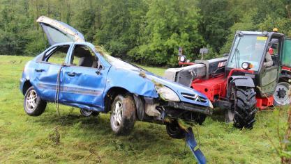 Spectaculaire sortie de route à Bournonville : une voiture s'immobilise au milieu des génisses