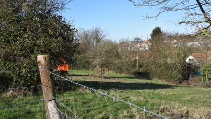 Saint-Martin-Boulogne : Du rififi pour des arbres en moins dans le poumon vert de la Waroquerie