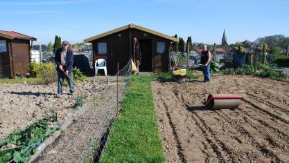 La nouvelle organisation des Jardins ouvriers d'Hazebrouck