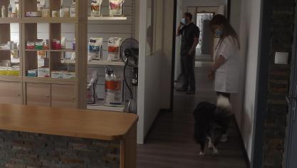 Téteghem : une nouvelle clinique vétérinaire au Chapeau-Rouge