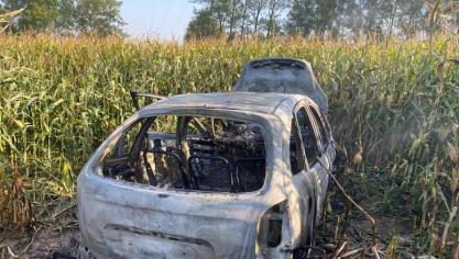 Une voiture incendiée dans un champs de maïs à Crémarest