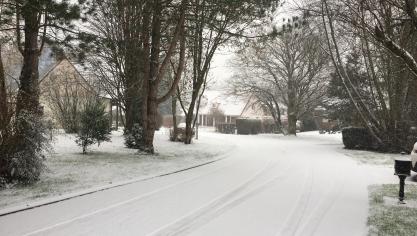 Dans tout le Montreuillois, la neige a fait des heureux (album photos)
