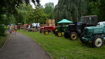 Une exposition de vieux tracteurs.